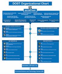 Neda Organizational Chart Organizational Structure