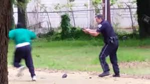 Image result for police deadly force