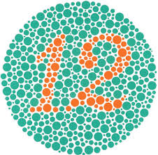 Color Vision Chart Pdf Ishihara Color Blindness Test The Ishihara Color Blindness Test