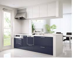 Frameless Kitchen Cabinet Manufacturers Pretty Frameless Kitchen Cabinets Manufacturer On Kitchen With