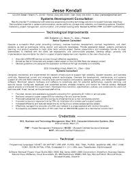 Consulting Resume Examples Sonicajuegos Com