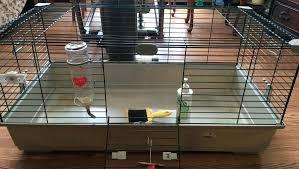 glass guinea pig cage playmates plastic diy plexiglass