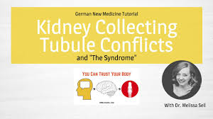 German New Medicine Kidney Collecting Tubules Conflict And The Syndrome