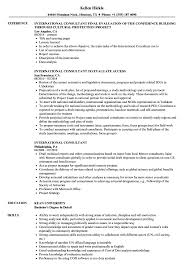 International Consultant Resume Samples Velvet Jobs