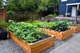 Lawn & Garden:Vegetable Planter Box In Backyard Garden Ideas Garden Box  Design Ideas For
