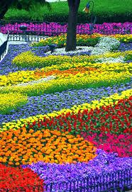 Small Picture 17 best ideas about flower garden design on pinterest growing