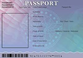 blank passport template - Google Search | Graduation Paraty ...
