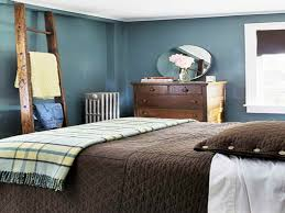 ... Bedroom Paint Ideas For Modern Blue And Brown Paint Ideas For  Inspirations Cool Brown And Blue Ideas Brown And ...