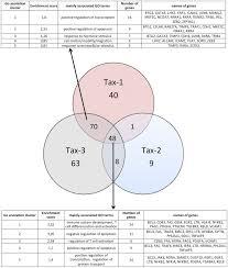 Venn Diagram Bioinformatics Venn Diagram Representation Performed On 239 Cellular Genes