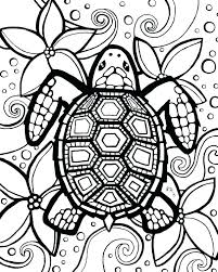 coloring printable turtle coloring pages free preschool to print page