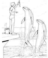 Dolphin Coloring Pages Free Printable At Getdrawingscom Free For