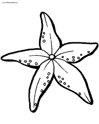 Small Picture Starfish Coloring Page Clipart Panda Free Clipart Images