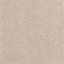 beige carpet texture. Rookie II - Color Polished Brass Texture 12 Ft. Carpet Beige R