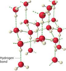 Hydrogen Bonding 11 5 Hydrogen Bonds Chemistry Libretexts