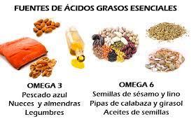 LOCOSxloECO: Las Grasas y los Ácidos grasos