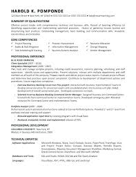 It Business Analyst Resume Examples Business Analyst Resume Sample