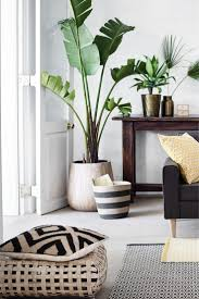 Housse de coussin en jute. Plants In Living RoomLiving ...