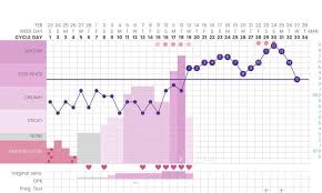 Sample Bbt Chart Showing Ovulation Detecting Pregnancy Or Ovulation On Your Basal Body