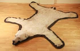 image of polar bear skin rug