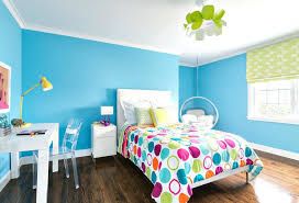 teen room paint ideasTeenage Girl Room Paint Ideas  alternatuxcom