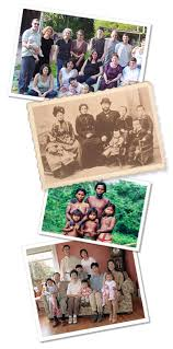 Make A Family Tree Online Free Free Online Family Tree