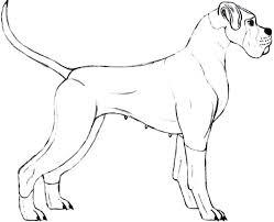 Boxer Dog Coloring Sheets Psubarstoolcom