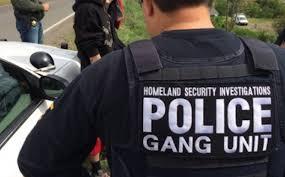 """Résultat de recherche d'images pour """"police ice + gangs"""""""