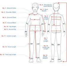 Body Measurement Chart Template Download Jasonkellyphoto Co