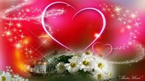 nice love flower wallpaper
