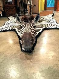 zebra skin rug authentic hide