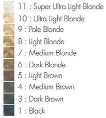Arctic Fox Hair Dye Colour Chart Buy Arctic Fox Semi Permanent Hair Color Dye 4 Once Violet