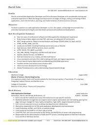application developer resume. Application Developer Resume Inspirational Web Developer Resume