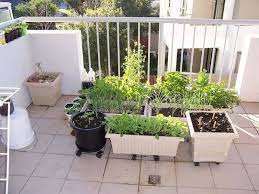 apartment herb garden. Apartment Herb Garden Balcony Organize C