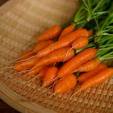 baby carrots. Plain Carrots Baby Carrot Intended Baby Carrots
