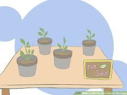 image titled start an herb garden business step 1