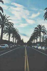 palm trees tumblr vertical. Breezy Cali California Cars Palm Trees Photography Streets Tumblr Vertical