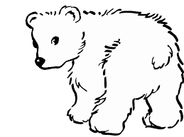 Small Picture Polar Bear Coloring Pages chuckbuttcom
