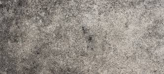 how to remove mold from concrete floors