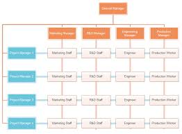 example of org matrix org chart org charting