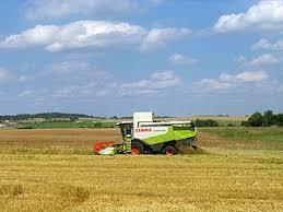 Сельское хозяйство Белоруссии Википедия Сельское хозяйство Белоруссии
