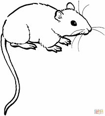 Small Picture Pages Free Cute And Easy Printable Coloring Mouse Coloring Page
