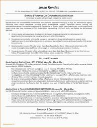 Security Guard Resume Examples Security Guard Resume Sample Writing Tips Genius Example
