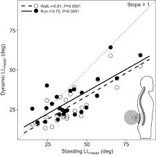 walking journal shock attenuation in the human lumbar spine during walking and