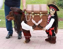 best homemade dog pirate costume