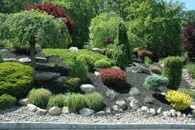 Small Picture Conifer Garden Design Ideas Australia Sixprit Decorps