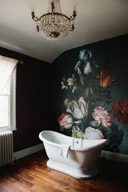 makeup lighting fixtures. Image Of Bathroom Lighting Ideas For Vanity Photos Design Diy Makeup Lights Chandelier In Small Es Fixtures L