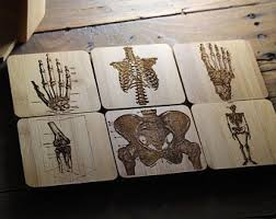 Office decorative Grey Wall Paint Mixed Orthopedic Coasters Human Bones Surgeon Gift Doctor Gift Medical Office Decor Skeleton Orthopedist Knee Physical Therapist Designtrends Medical Office Decor Etsy
