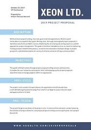 Professional Business Proposals Business Proposal Template Word From Design Haven