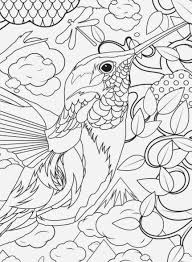 Hard Bird Coloring Pages At Getdrawingscom Free For Personal Use