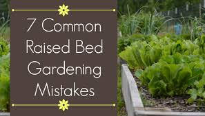 7 Common Mistakes in <b>Raised Bed Gardening</b> - The Beginner's ...
